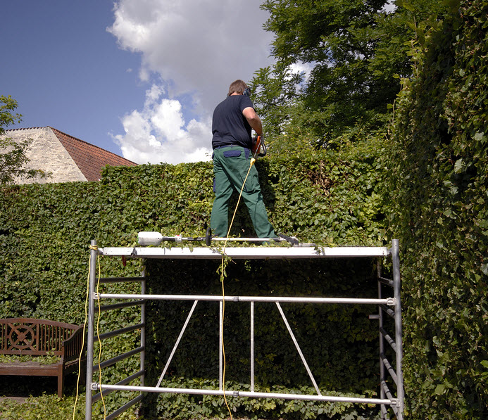 hedge cutting worcestershire worcester uk
